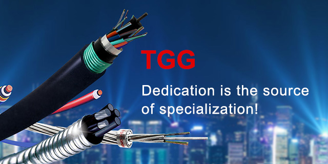 TGG—Dedication is the source of specialization!